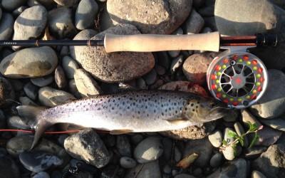 River Dee in Corwen – 10th July